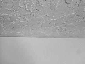 Photo of a thick hawk and trowel on the ceiling with smooth walls